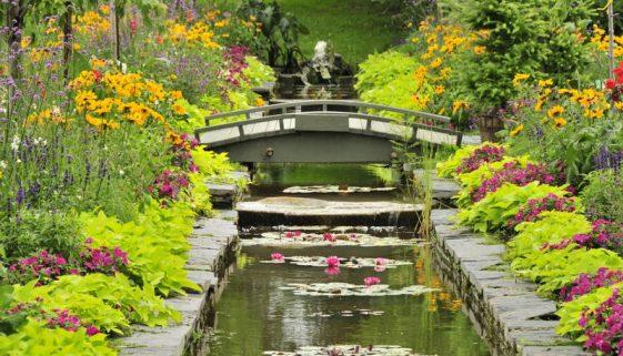parc-marie-victorin-de-kingsey-falls-bassin
